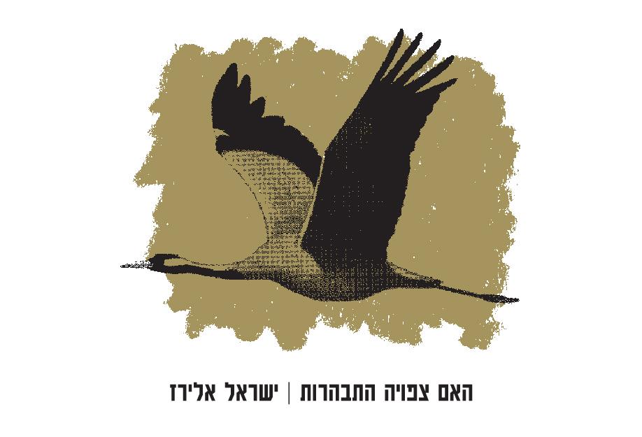 האם צפויה התבהרות | ישראל אלירז