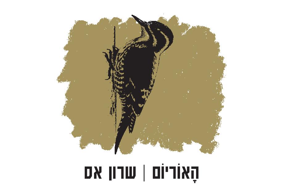 האוריום / שרון אס